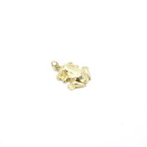Mooie kikker hanger goud
