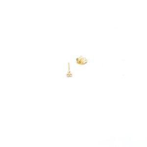 Leuke gouden oorbel